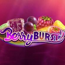 Berryburst logo logo