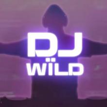 DJ Wild logo logo