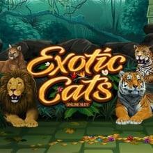 Exotic Cats logo logo