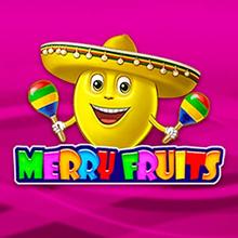 Merry Fruits logo logo