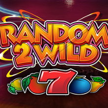 Random 2 Wild logo logo