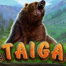 Taiga logo logo