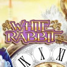 White Rabbit logo