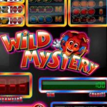 Wild Mystery logo logo