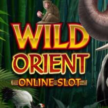 Wild Orient logo