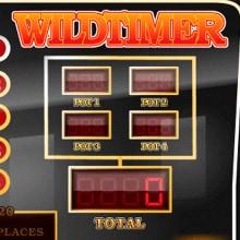 Wildtimer logo logo