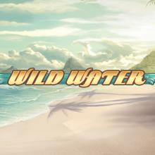 Wild Water logo logo
