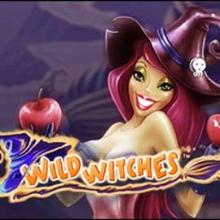 Wild Witches logo logo
